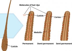 Luxju - Hair Dye