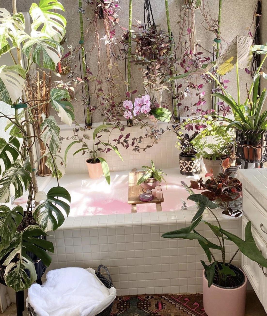 Luxju - Self Care At Home